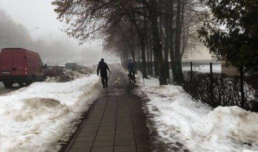 Miestiečių kasdienybė – laipioti po šunų išmatas