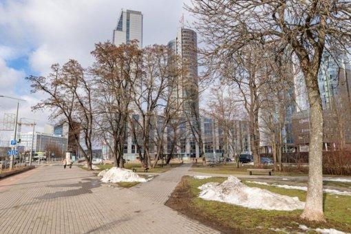 Vilniečių iniciatyva: miesto centre kuriamas eksperimentinis skvero apželdinimo projektas