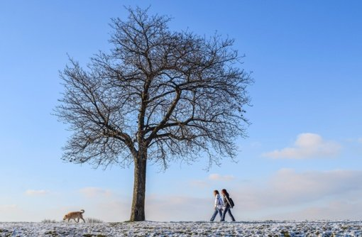 Pavasario pradžia džiugins šiluma, tačiau žiema dar sugrįš