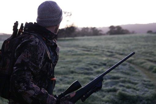 Pakruojo aplinkosaugininkų tyrimas: medžiotojas, nušovęs sveiką stirniuką, patrauktas administracinėn atsakomybėn