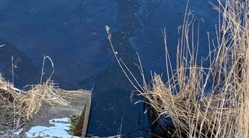 Beržės upelio teršėjas nėra nustatytas
