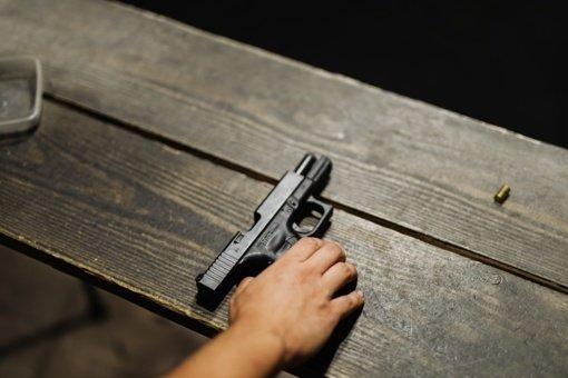 Vilkaviškio rajone nušauta telyčia