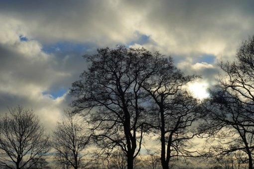 Šiluma džiaugsimės neilgai: grįžta vėsesni orai ir šlapdriba