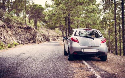 Į saugomas teritorijas vykdami automobiliu, laikykitės galiojančių taisyklių
