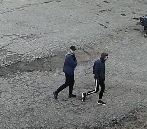Policija ieško, kas Alytuje apgadino automobilius