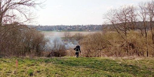 Vilainiuose išdegė Nevėžio pakrantė