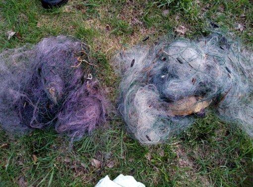 Alytaus aplinkosaugininkai sulaikė pažeidėjus, neteisėtai žvejojusius statomaisiais tinklais
