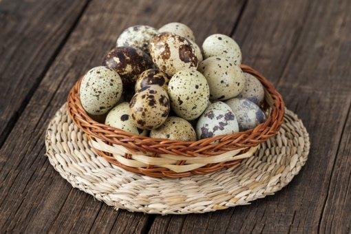 Putpelių kiaušinių užkandis  abejingų nepalieka