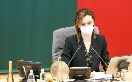 V. Čmilytė-Nielsen: diskusijos dėl merų kadencijų skaičiaus – po Konstitucijos keitimo