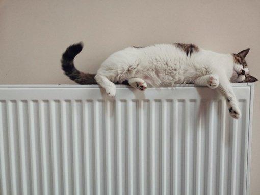 Šiaulių rajone baigiamas šildymo sezonas