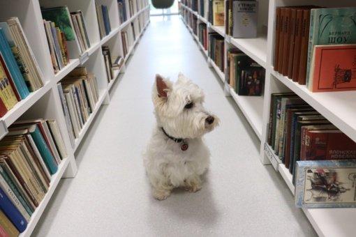 Lentvario miesto biblioteka – draugiška gyvūnams