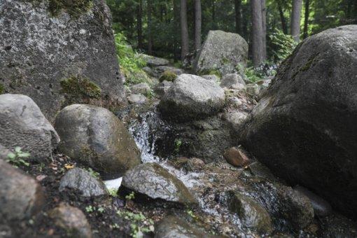 Tyrimas: Lietuvos šaltiniuose trykšta itin geras vanduo