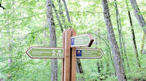 Alytus kviečia į nemokamas ekskursijas Vidzgirio draustinyje