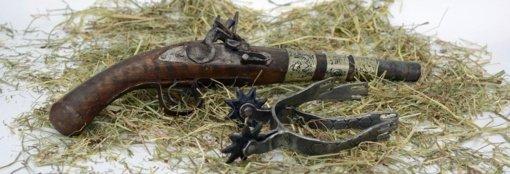 Merkinės muziejuje lankėsi policija: pradėtas tyrimas dėl neteisėtai laikomų ginklų