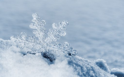 Orų istorija: sniegas birželio mėnesį