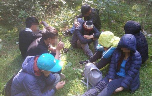Kariuomenė pasirengusi teikti paramą statant palapinių miestelį migrantams