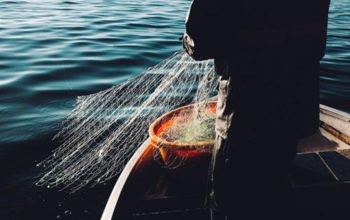 Lazdijuose aptiktas automobilis su dideliu kiekiu žuvies, pažeidėjui teks atlyginti 14 tūkst. eurų žalą