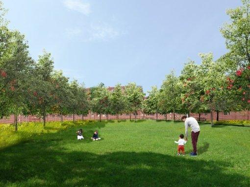 Atsinaujins aplinka Ramybės, Pušyno I ir Pušyno II daugiabučių kvartaluose