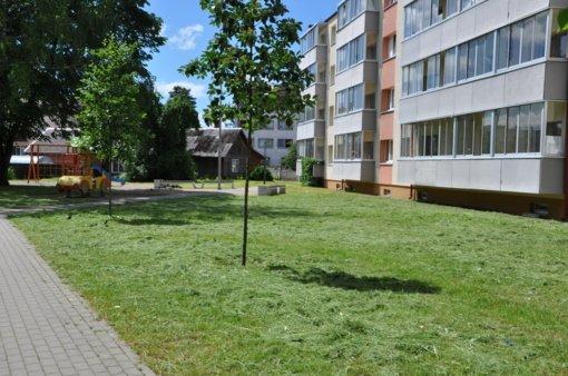 Paaiškino, kodėl Varėnoje laiku nenušienauta žolė