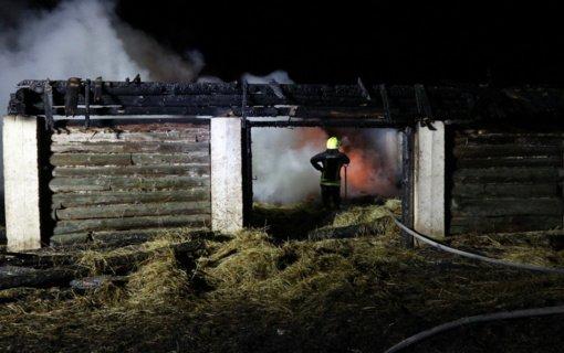 Per pusmetį kilusių gaisrų skaičius mažiausias per 18 metų