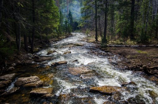 Daugiau nei pusė Žemės upių ir upelių periodiškai nustoja tekėti arba išdžiūsta