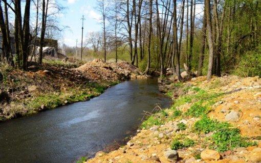 Penkios upės sulauks pagalbos – ruožais bus grąžintos į natūralią tėkmę