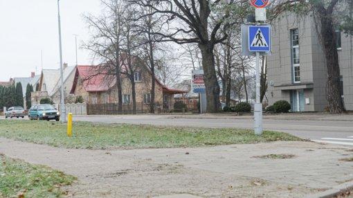 Rekonstruojant Ulonų gatvę vėl kris medžiai?