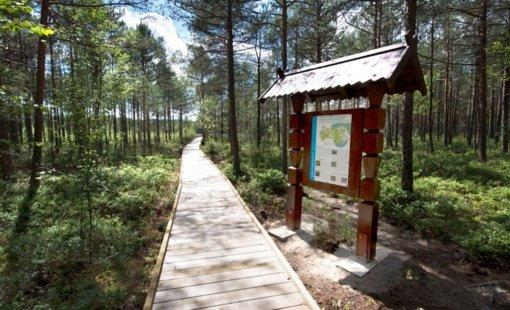 Visagine remontuojamas medinis takas prie Kukuižės ežero