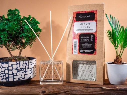 """Namai, į kuriuos gera sugrįžti: sukurkite ypatingą atmosferą su """"ACappella"""""""