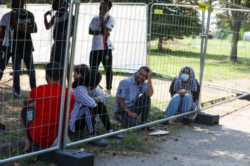 Seimo vadovė: prezidento sprendimo dėl migrantų teisių įstatymo laukiama trečiadienį