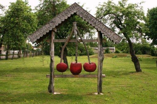 Žagarėje prasideda tradicinis Vyšnių festivalis