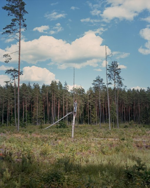 """Fotografijos muziejus pristato jaunosios kartos kūrėjo Andrejaus Polukordo projektą """"Miško statulos"""""""