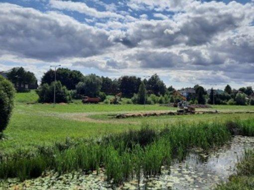 Pradedami Pakruojo miesto Kruojos upės pakrančių ir miesto parko tvarkymo darbai