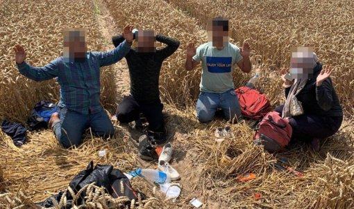 Pasienyje su Baltarusija penktadienį sulaikyta 40 migrantų
