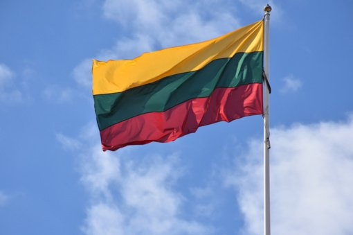 Vilniuje neblaivus jaunuolis sudraskė valstybinę vėliavą