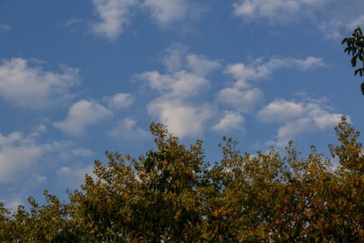 Šilti rudens orai neužsitęs: grįš lietus
