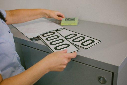 Seimas svarstys siūlymą leisti ant automobilių numerių naudoti Vytį