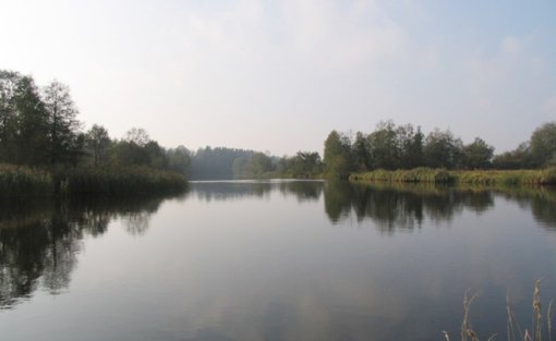 Ištirtose Mažeikių rajono maudymosi vietose vanduo švarus