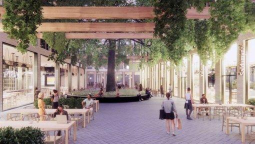 Brandūs ąžuolai padiktavo koncepciją naujam kvartalui sostinėje