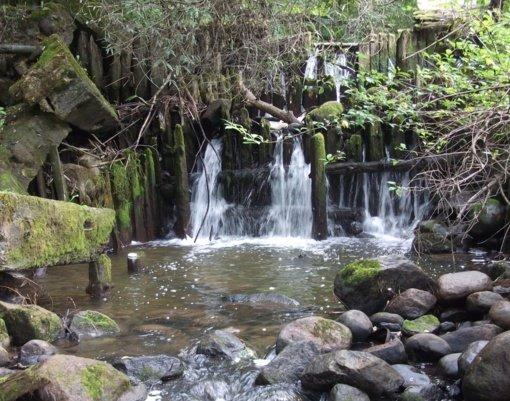 Anykštos upės užtvanką raginama atstatyti, o ne versti