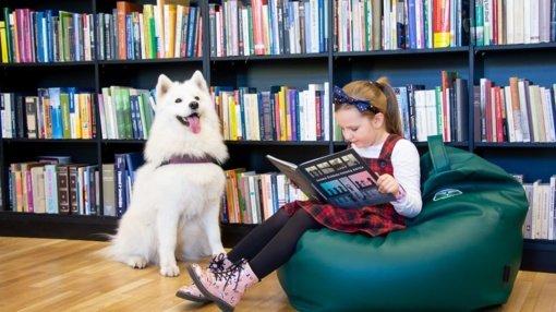 Kauno Vinco Kudirkos viešojoje bibliotekoje – skaitymai vaikams su terapiniais šunimis