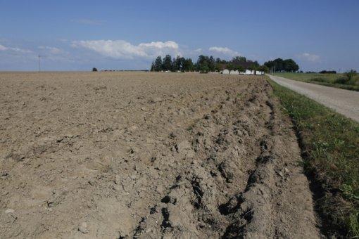 Daugėja norinčiųjų ūkininkauti ekologiškai