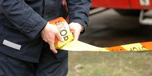 Krūmuose Akmenės rajone rasti 239 šoviniai