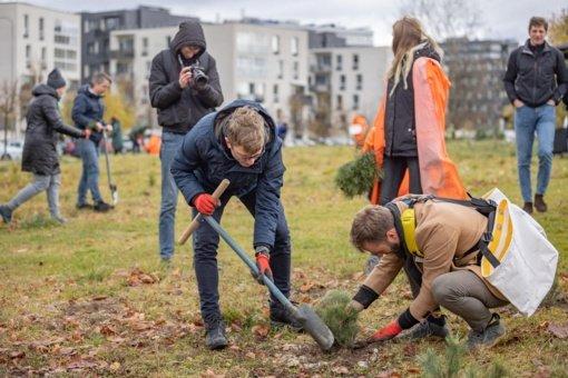 Vilniuje buvo pasodintas pirmasis miesto miškas