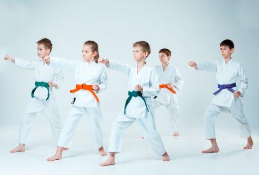 Ugdančios karatė treniruotės vaikams