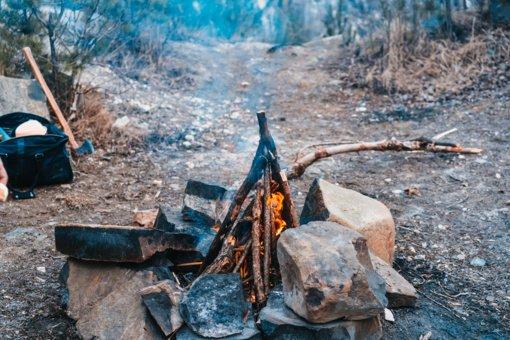 Dingęs be žinios ukmergiškis apsigyveno miške: pabodo klausytis priekaištų, kad nesitvarko namų