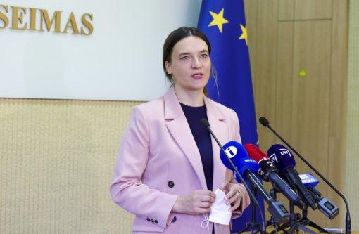 R. Morkūnaitė-Mikulėnienė: prezidentas, EVT keldamas klausimus dėl migracijos, buvo pernelyg santūrus