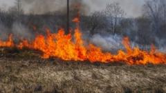 Žolės degintojus griežtai baus