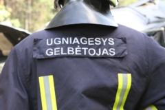 Per Vilniaus daugiabutyje kilusį gaisrą žmonės nenukentėjo