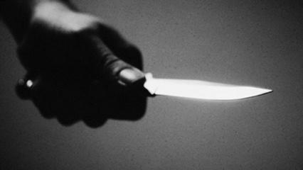 Gindamas moterį Kelmės rajone mažametis peiliu sužalojo vyrą